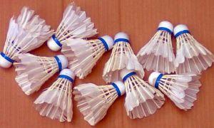 Kok Badminton